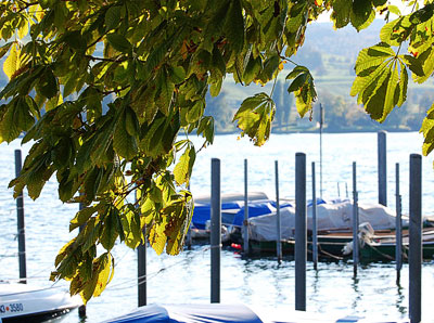 Restaurant-Falconera-Eindruecke-Landschaft-klein
